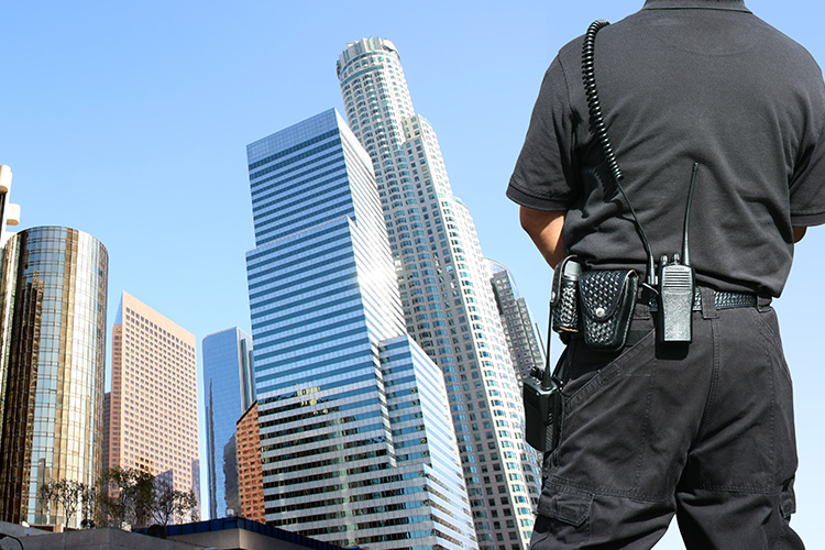 P&S Servicedienstleistungen Sicherheitsdienste Revierdienste